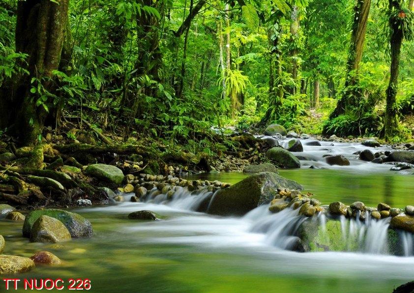 Tranh thác nước 226