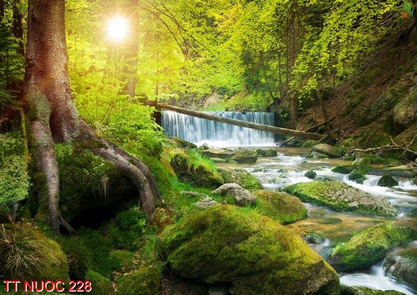 Tranh thác nước 228