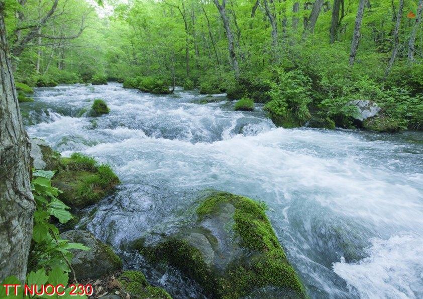 Tranh thác nước 230