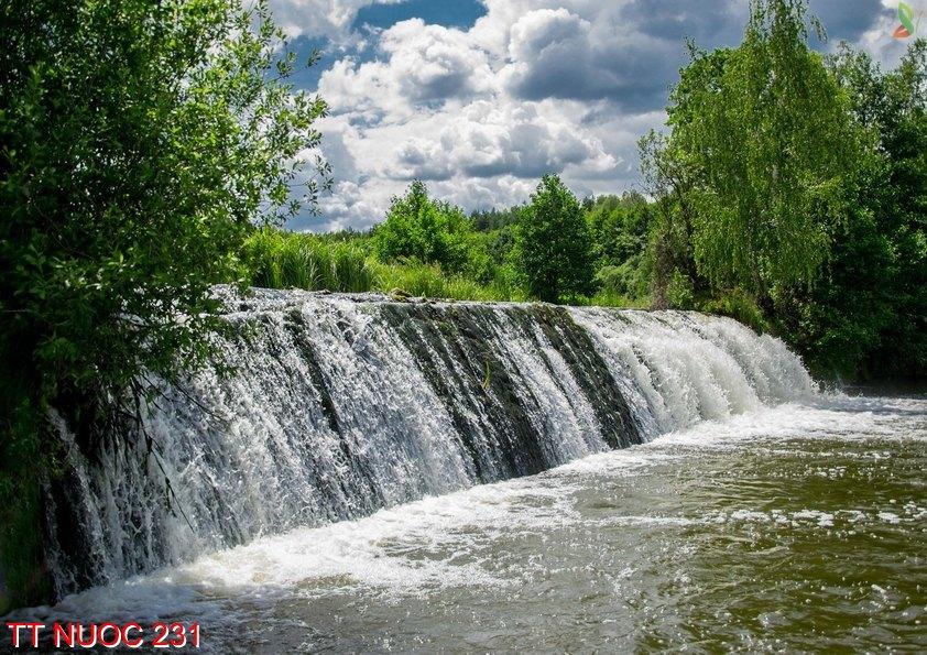 Tranh thác nước 231