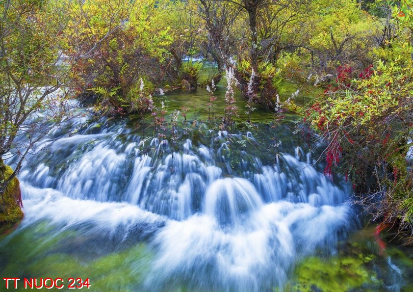 Tranh thác nước 234