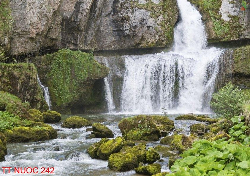 Tranh thác nước 242