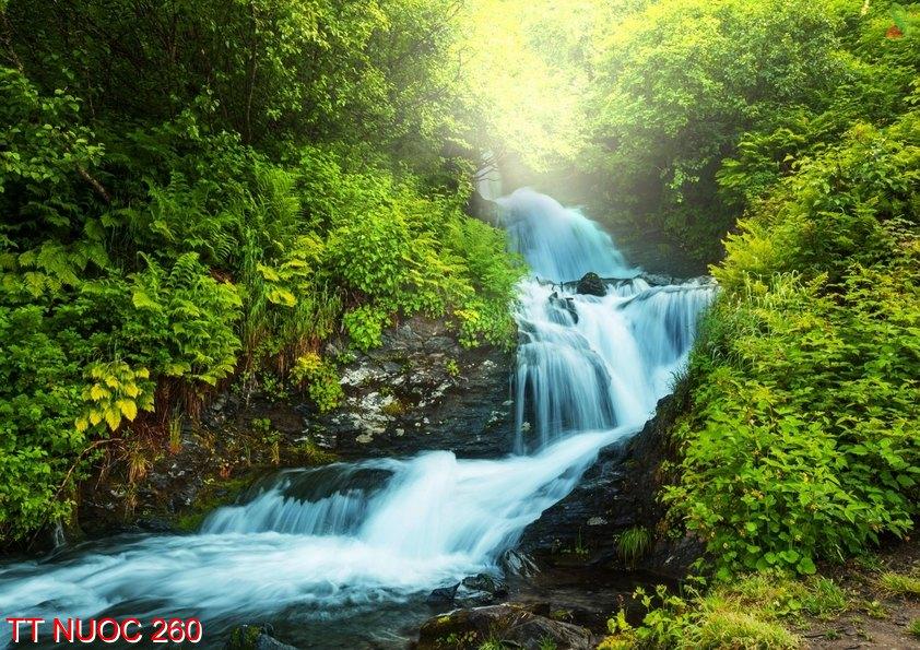 Tranh thác nước 260