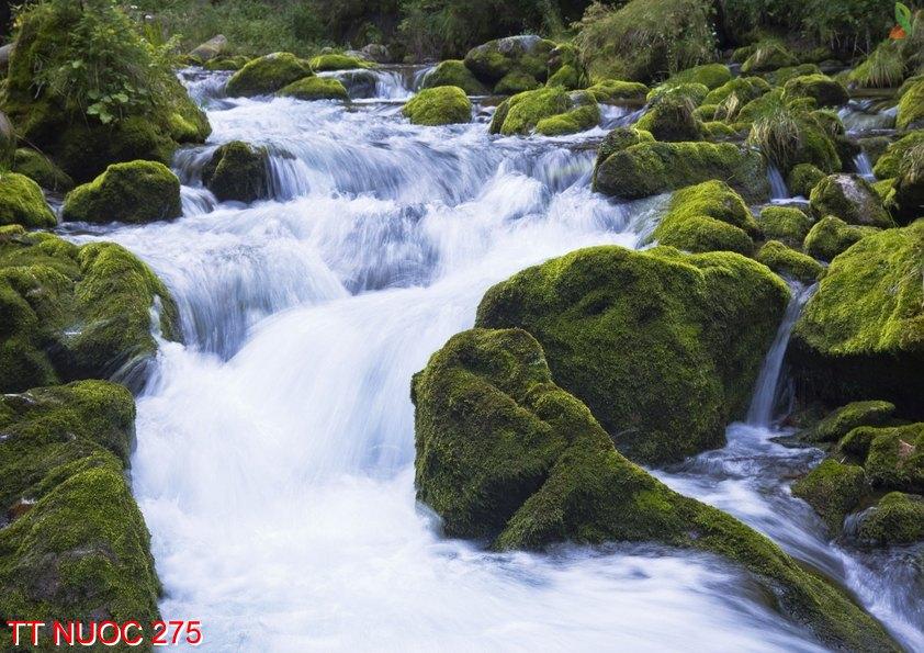 Tranh thác nước 275