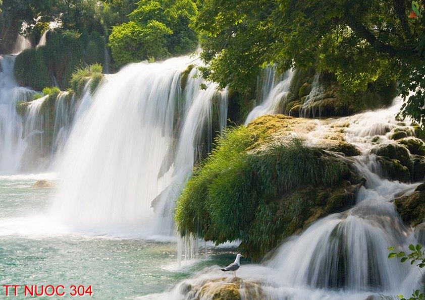 Tranh thác nước 304