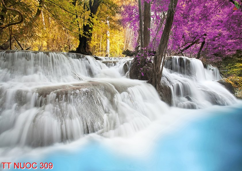 Tranh thác nước 309