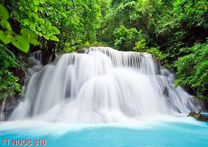 Tranh thác nước 310
