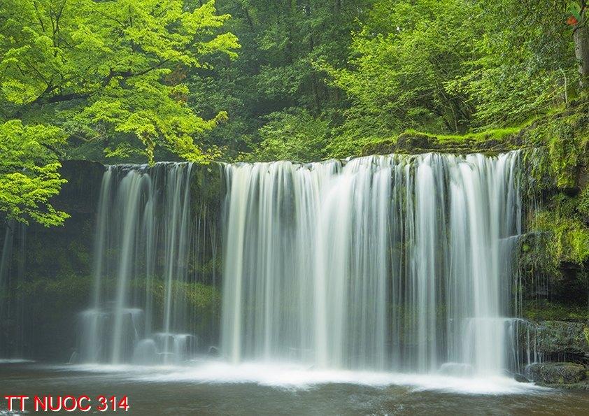 Tranh thác nước 314
