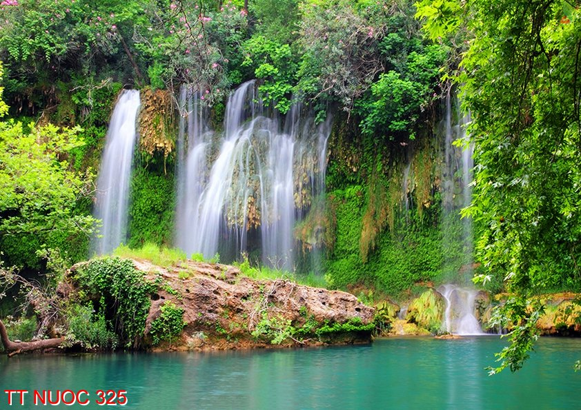 Tranh thác nước 325