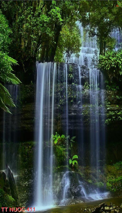 Tranh thác nước 411
