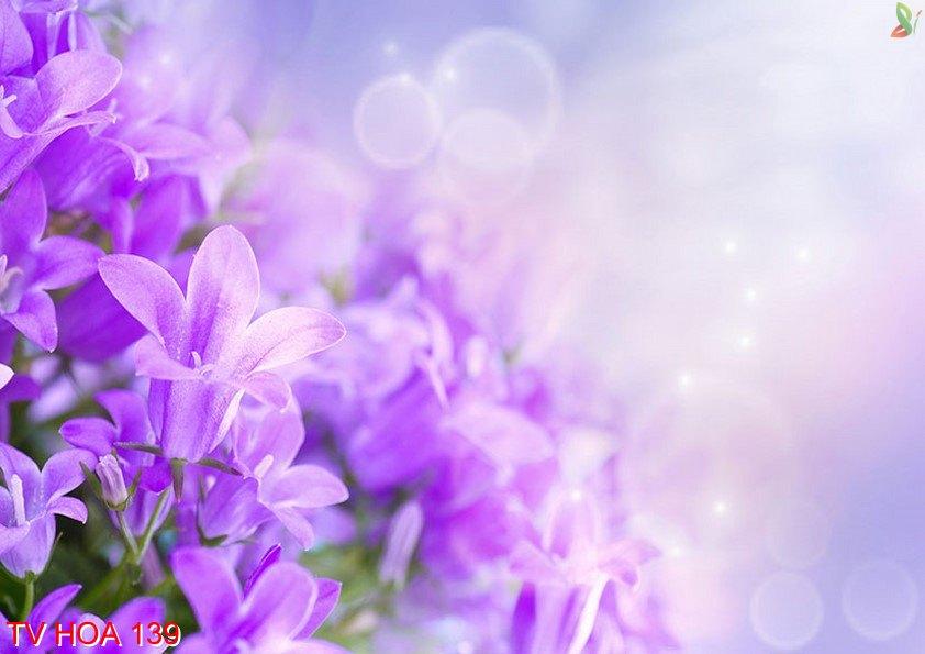 Tranh về hoa 139