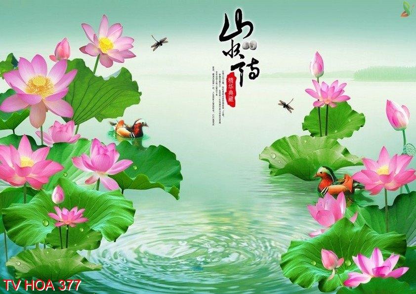 Tranh về hoa 377
