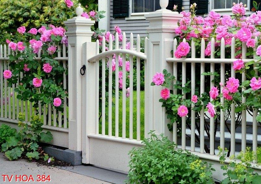 Tranh về hoa 384