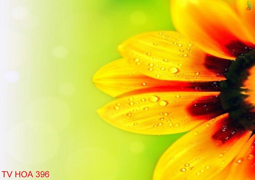 Tranh về hoa 396