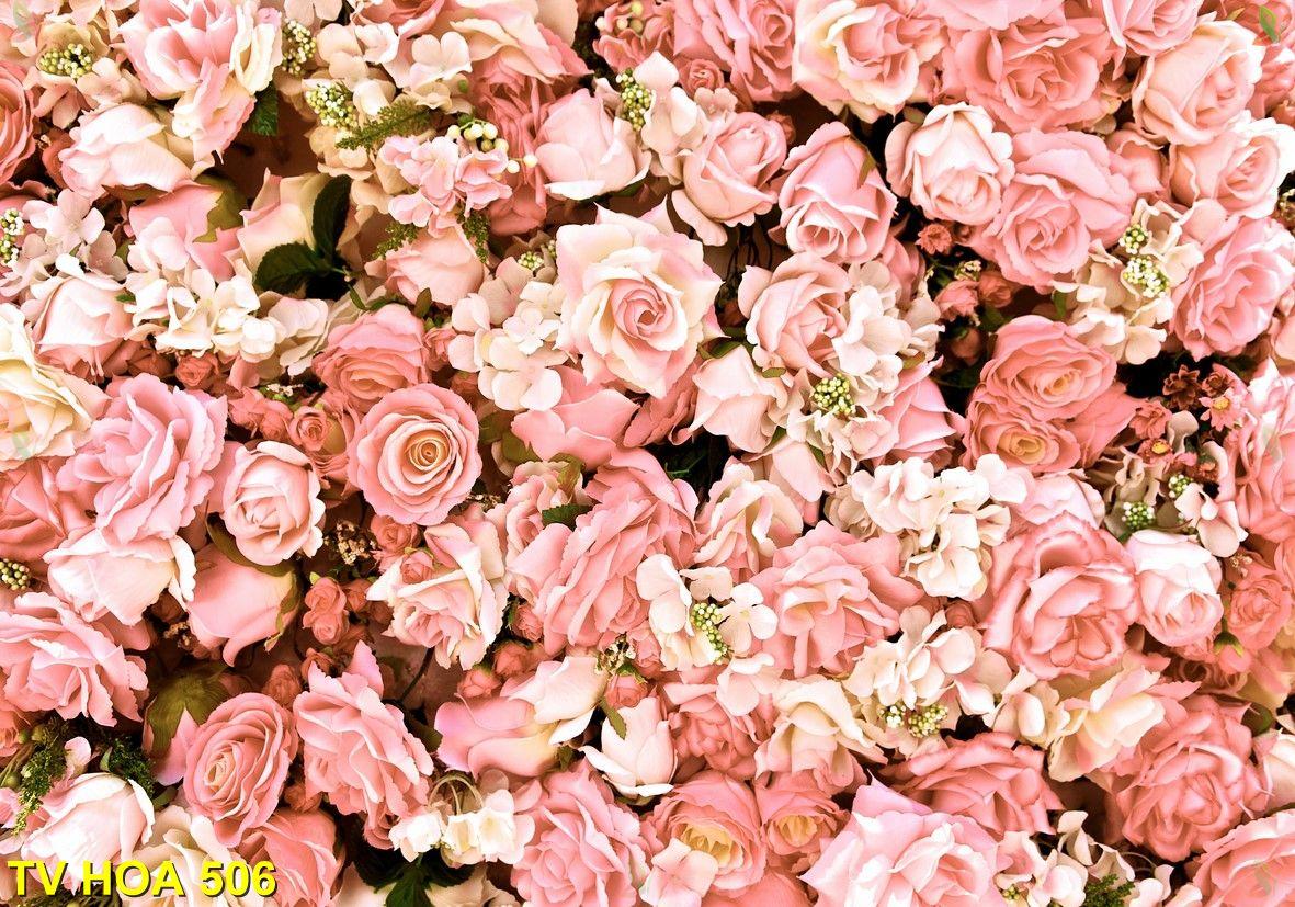 Tranh về hoa TV Hoa 506